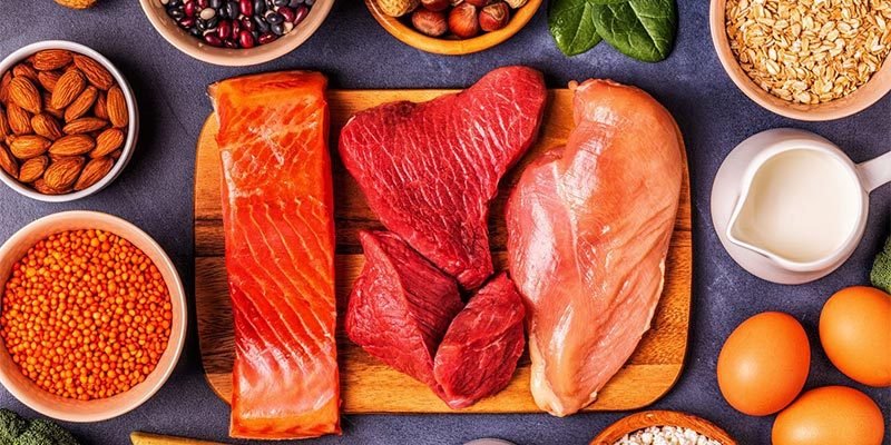 The importance of protein intake